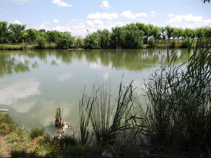 gde pecati u vojvodini reviri u srbiji horgoš