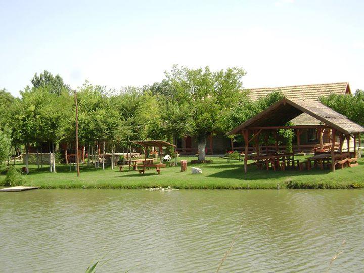 komercijalno jezero sovin salas vojvodina