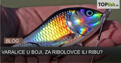 Varalice u boji, za ribare ili ribu?