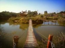 sever srbije vojvodina pecanje